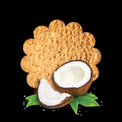 Nutribella biskvit kokos 1kg